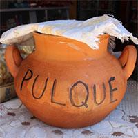 Pulque - Thứ rượu dành cho đàn ông đích thực