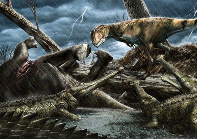 """Nơi đây từng """"chồng chất"""" các loài săn mồi khổng lồ và nguy hiểm nhất lịch sử hành tinh"""