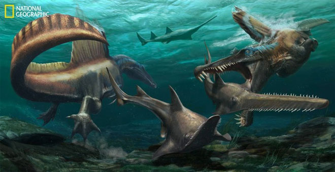 Minh họa về loài khủng long biết bơi, săn mồi dưới nước Spinosaurus aegyptiacus
