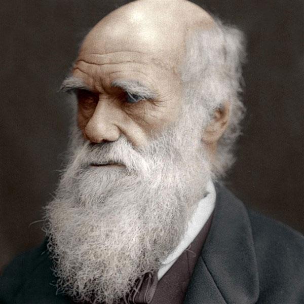 Nhà khoa học Charles Darwin.
