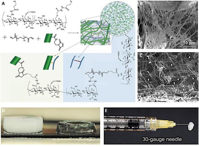 Loại gel mới này là một đột phát về mặt khoa học