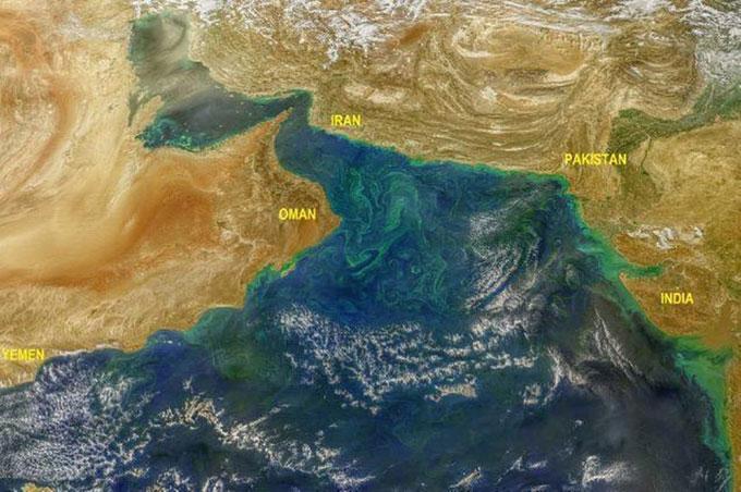 Tảo độc (màu xanh lục) phát triển mạnh trên biển Arab nhìn từ không gian.