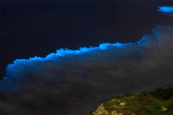 Đối với những người lướt sóng, việc bờ biển phát sáng mang tới cho họ một cơ hội hiếm thấy.