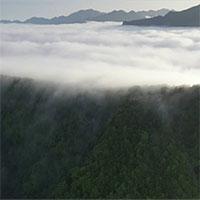 """Mây cuồn cuộn """"tuôn chảy"""" từ đỉnh núi cao 3000m như thác chảy"""