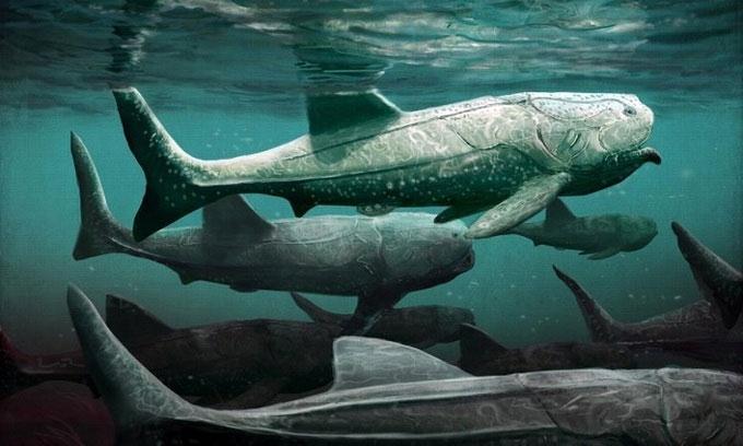Cá Titanichthys là loài cá da phiến khổng lồ sống ở cuối kỷ Devon.