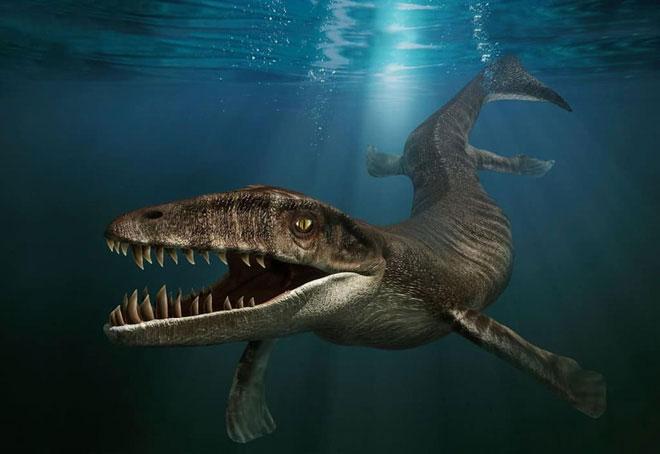 Cá sấu trong kỷ Mesozoi có thân hình chẳng hề giống với cá sấu ngày nay một chút nào.