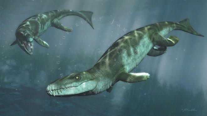 Dakosaurus là một loài cá sấu tiến hóa để thích nghi cuộc sống hoàn toàn dưới đại dương.