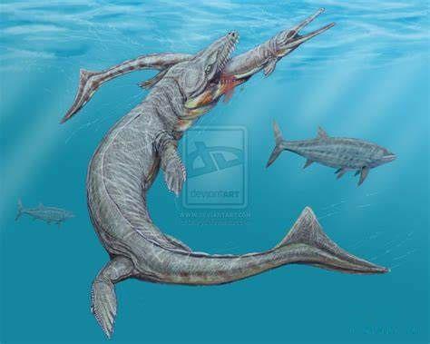 Dakosaurus.
