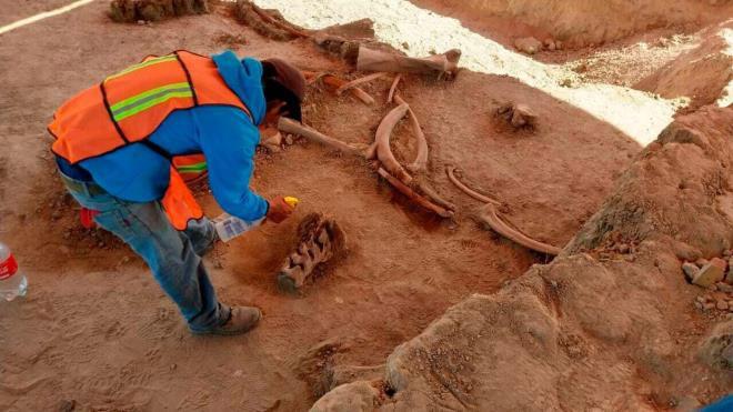 Hàng chục bộ xương mới được khai quật ở Mexico City.