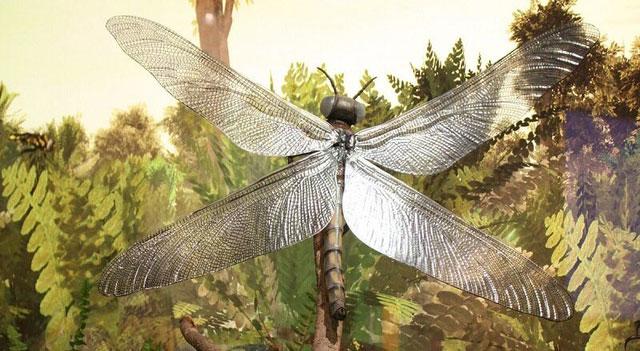 Chuồn chuồn khổng lồ Meganeura - tổ tiên của loài chuồn chuồn ngày nay.
