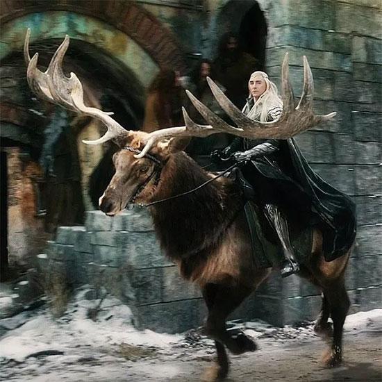 """Trong """"The Hobbit"""", thú cưỡi của Thrandil là một con nai khổng lồ có cặp sừng rất lớn."""