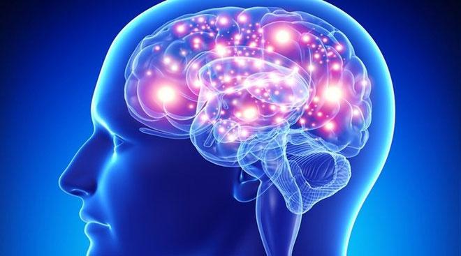 Phát hiện lần này của các nhà khoa học có thể mở ra những phương pháp điều trị stress mới trong tương lai.