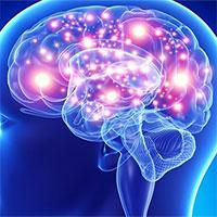 """Tìm ra vị trí stress """"trú ẩn"""" trong bộ não"""