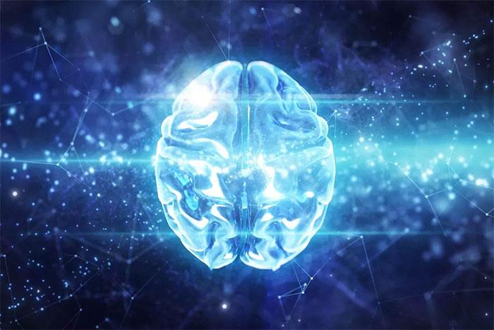 Tái tạo những bộ não đã ngừng hoạt động là điều bất khả thi.