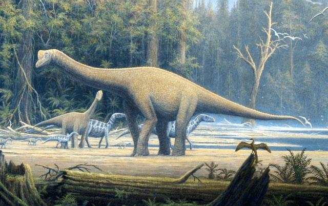 Các nhà khoa học cho rằng, khủng long Sauropod có khả năng điều hòa thân nhiệt.