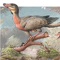 Phát hiện loài khủng long ăn thịt giống chim mới