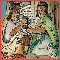 Giải mã loại lá cây được quý hơn vàng của đế chế Inca