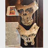 Hộp sọ người ngoài hành tinh và chiếc cặp bí ẩn