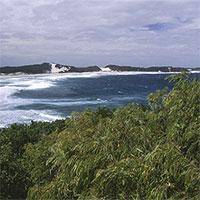Phát hiện hàng loạt dòng sông ngầm chảy dọc bờ biển