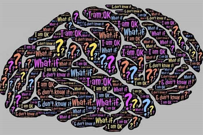Tính tò mò của con người thúc đẩy sự phát triển của trí tuệ.