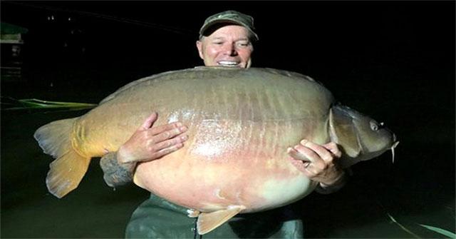 Cá chép khổng lồ nặng 51kg bất ngờ cắn câu cần thủ