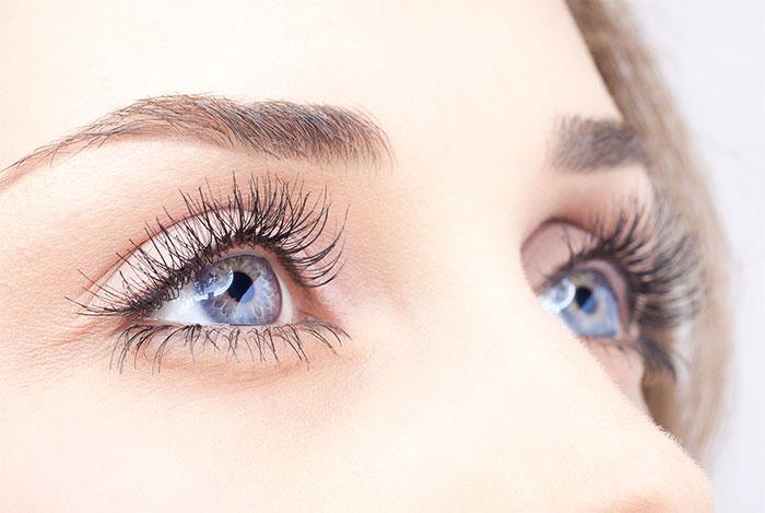Mỗi mắt có 6 cơ điều khiển mắt chuyển động theo các hướng khác nhau