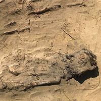 Phát hiện nghĩa địa cổ chôn cất khoảng 100 trẻ em