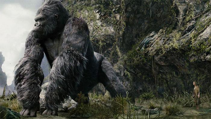 Nếu King Kong lớn hơn bình thường 10 lần, khả năng chịu lực của nó tăng 100 lần
