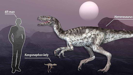 """Con người và một khủng long chân thú cỡ nhỏ được đem so sánh với """"ông tổ của mọi quái thú"""" (giữa)"""