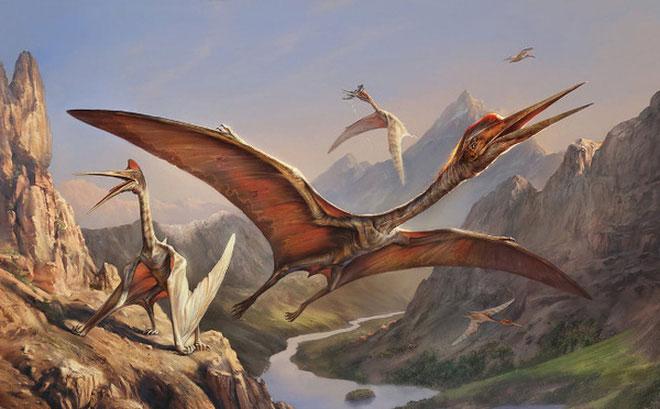 """Dực long Quetzalcoatlus chuyên săn khủng long, thế hệ cháu chắt của """"ông tổ"""" kích cỡ chim sẻ"""
