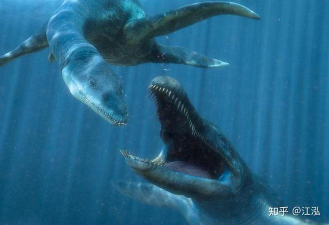 Mỗi cú đớp của Predator X có thể lên tới 15 tấn, gần gấp 3 lần lực cắn của Tyrannosaurus Rex.