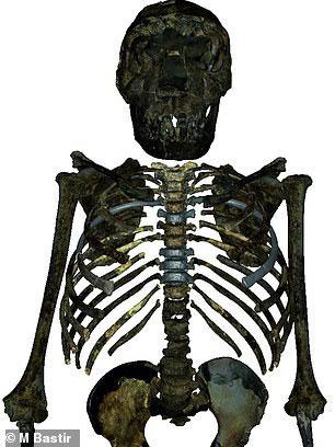 Cậu bé Turkana, bộ xương Homo erectus có thể nói là được bảo tồn tốt nhất thế giới