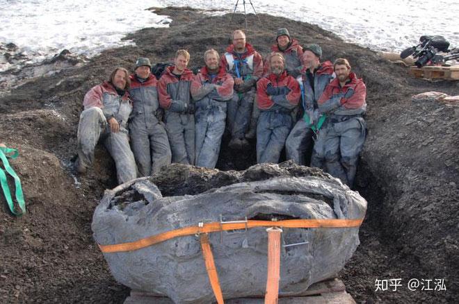 Sau khi lớp băng trên đảo Svalbard tan chảy, những mảnh xương hóa thạch bất ngờ phát lộ,