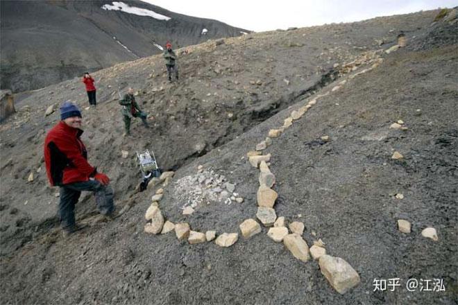 Những nhóm mẫu hóa thạch cho thấy đây là loài bò sát hàm lớn