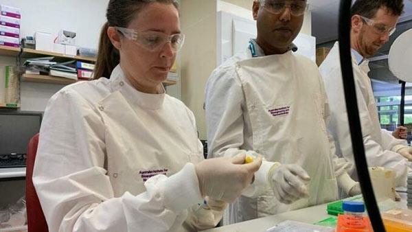 Các chuyên gia tại Đại học Queensland nghiên cứu phát triển vaccine tại phòng thí nghiệm