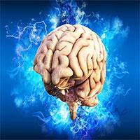 Tại sao ký ức gắn liền với cảm xúc lại mạnh đến vậy?