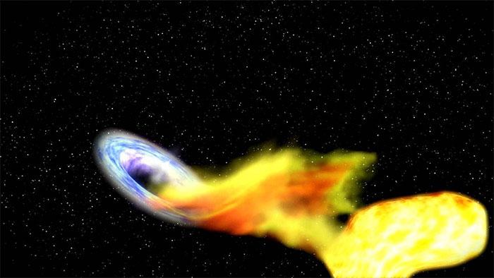 Hiện tượng kỳ lạ này có thể là do 1 ngôi sao lạc lối nào đó đã vô tình bị hố đen