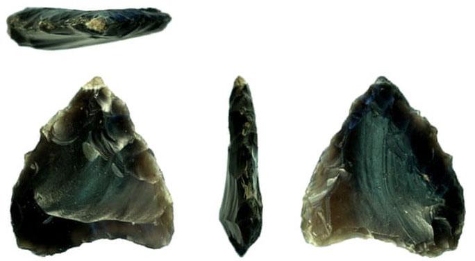 """Những hiện vật thời đồ đá, """"kho báu trong vườn"""" được một người dân hạt Shropshire phát hiện"""