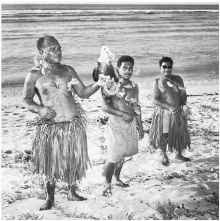 Chim biển đã tập trung trên đảo Nauru để nghỉ ngơi và phát triển đi theo đó là cả phân của chúng.