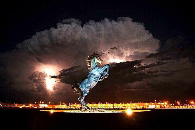 Blue Mustang là một trong những tác phẩm điêu khắc hình ngựa nổi tiếng nhất thế giới.