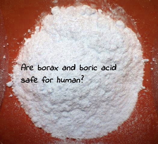 Cả borax và axit boric đều không an toàn cho con người nếu lỡ nuốt nhầm
