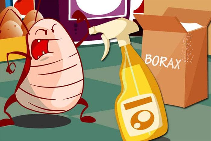 Axit boric sẵn có tại các hiệu thuốc (tại Mỹ) nhưng loại axit này có thể không thật sự tốt.
