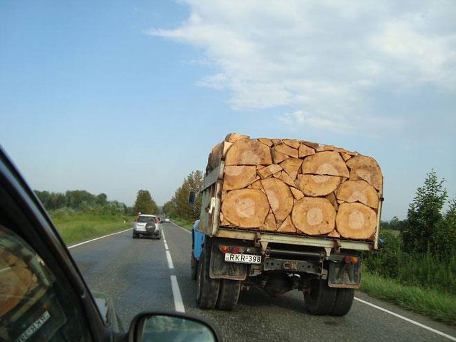 Nhiều người tự hỏi người xếp đống gỗ này mất bao nhiêu thời gian