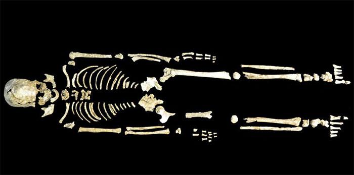 Bộ xương cổ 8.400 năm tuổi được tìm thấy khi khai quật tại Phúc Kiến (Trung Quốc).