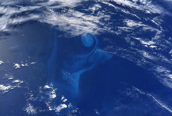 Hurley chụp ảnh vòng xoáy sinh vật phù du khi ISS bay qua Nam Thái Bình Dương vào ngày 15/6