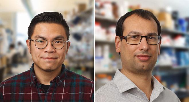 Hai tác giả nghiên cứu: PGS Adibekian (phải) và Alexander Amatuni (trái).