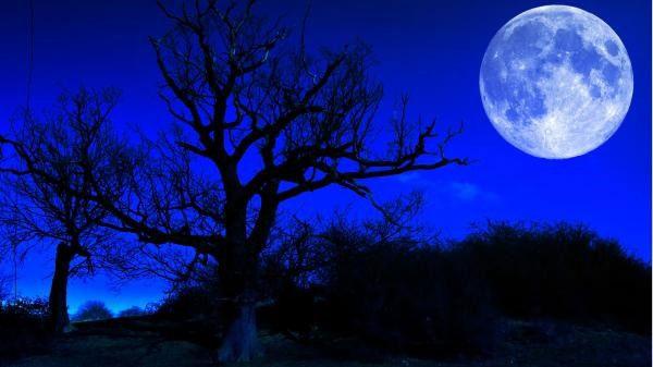 Cứ 19 năm mới có một lần trăng tròn đúng vào Halloween, nên năm nay bạn nhớ xem nhé.