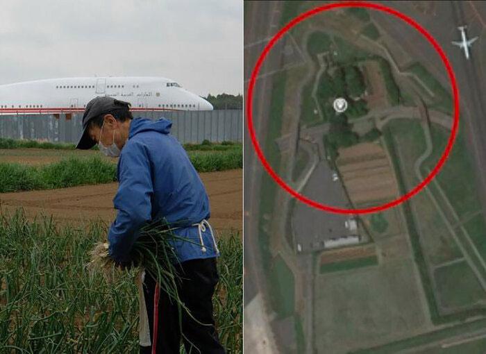 Trang trại của bác nông dân Nhật Bản nằm giữa sân bay quốc tế lớn thứ hai Nhật Bản.