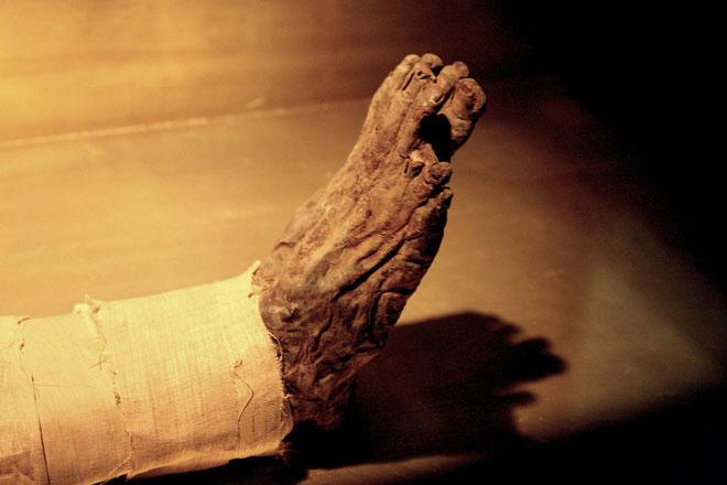 Có lẽ những kẻ mộ tặc đã đánh cắp thi thể nhà vua và bỏ quên... một bàn chân