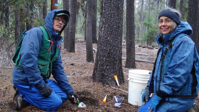 Các nhà nghiên cứu nấm Joyce Eberhart và Dan Luoma (phải) tại Đại học Oregon.